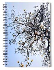 Autumn Spiral Notebooks