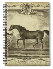 Designs Similar to Distinguished Horses Iv