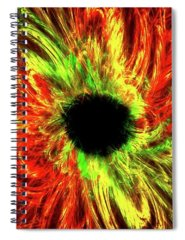 Bitter End Digital Art Spiral Notebooks
