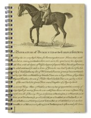 Designs Similar to Horse Portraiture Iv by Unknown