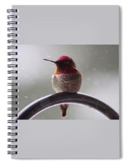 Macro Spiral Notebooks