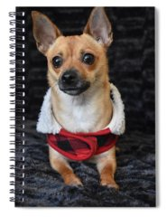 Dog Spiral Notebooks