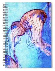 Monterey Bay Aquarium Mixed Media Spiral Notebooks