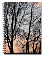 Sky Spiral Notebooks