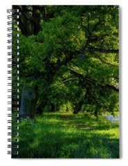 Panorama Photographs Spiral Notebooks