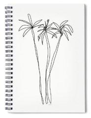 Desert Drawings Spiral Notebooks
