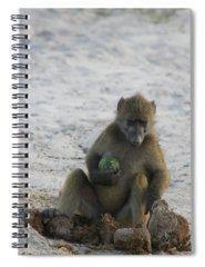 Hominids Spiral Notebooks