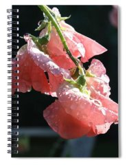 Floral Spiral Notebooks