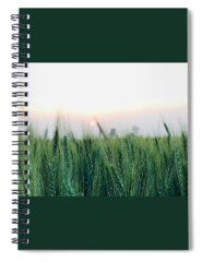 View Spiral Notebooks