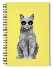 Kittens Cool Spiral Notebooks