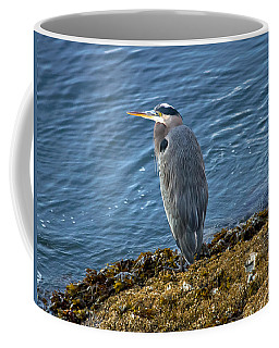 Coffee Mug featuring the photograph  Blue Heron On A Rock by Eti Reid