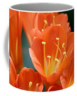 Clivia Coffee Mug by Karen Silvestri
