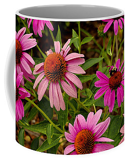 Coneflower Gang  Coffee Mug by James C Thomas
