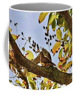 In Morning Light Coffee Mug by Craig Wood