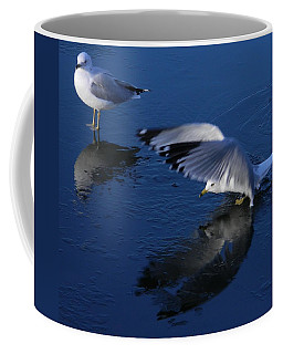 Coffee Mug featuring the photograph  Landing On Icy Water by Emmy Marie Vickers