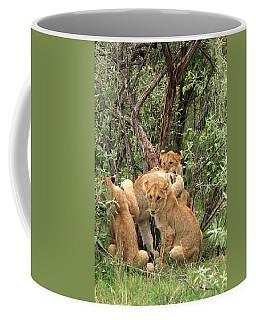 Masai Mara Lion Cubs Coffee Mug