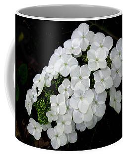 Oak Leaf Hydrangea Coffee Mug