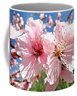Peach Blossom Coffee Mug by Clare Bevan