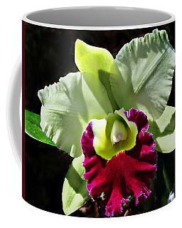 Rlc Pratum Green ' Boonserm ' Hcc Aos 2007 Coffee Mug
