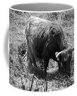 Scottish Highland Bovine Coffee Mug