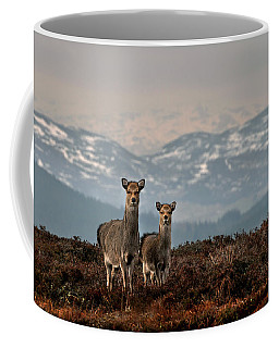 Sika Deer Coffee Mug