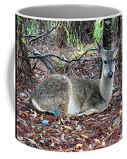 Coffee Mug featuring the photograph  Whitetail Deer 021  by Chris Mercer