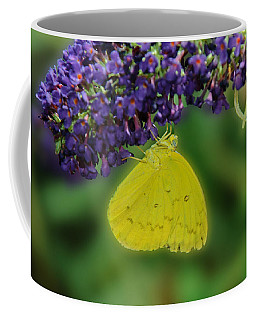 Coffee Mug featuring the photograph 071313 - 8686 by Tam Ryan