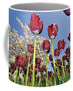 Coffee Mug featuring the photograph 090416p029 by Arterra Picture Library