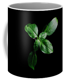 A Sprig Of Basil Coffee Mug