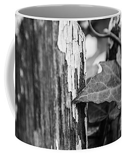 Along The Fence Coffee Mug