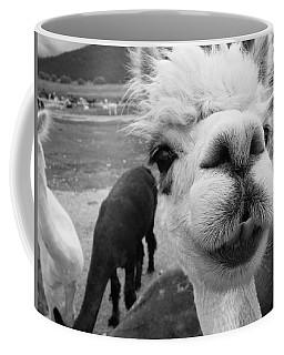 Alpaca Face Coffee Mug