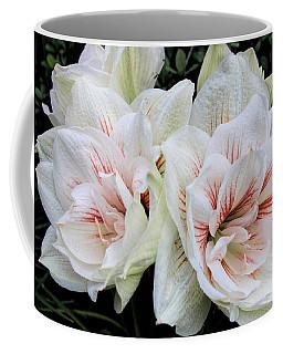 Amaryllis Cluster Coffee Mug