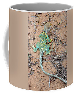 Another Collared Lizard Coffee Mug