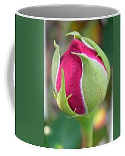 Coffee Mug featuring the photograph Anticipation by Deb Halloran