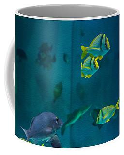 Aquarium Fish Coffee Mug