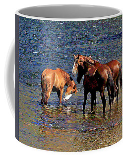 Arizona Wild Horses On The Salt River Coffee Mug