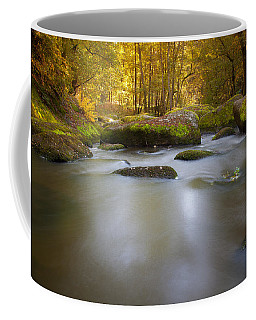 Waldnaab Tal  Coffee Mug