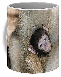 Baby Barbary Macaque Coffee Mug