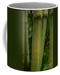 Coffee Mug featuring the photograph Bamboo II by Robert Meanor