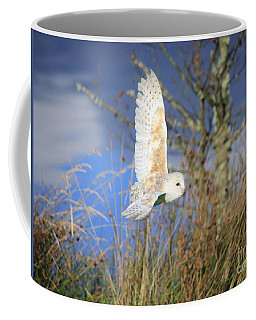 Coffee Mug featuring the photograph Barn Owl by Maria Gaellman