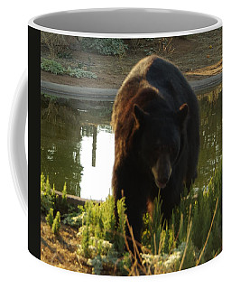 Bear 1 Coffee Mug