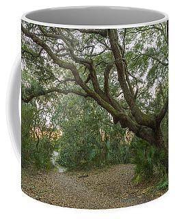 Behind The House Coffee Mug