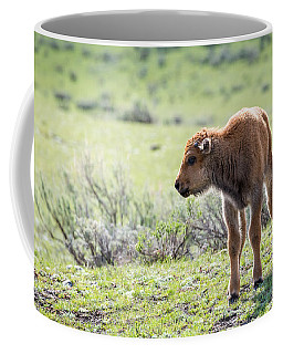 Bison Calf Coffee Mug