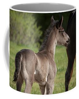 Black Foal Coffee Mug