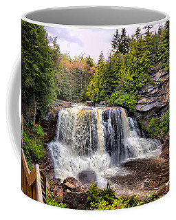 Blackwater Falls Sp Coffee Mug