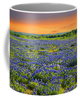 Bluebonnet Sunset  Coffee Mug