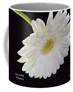 Coffee Mug featuring the photograph Bright White Gerber Daisy # 2 by Jeannie Rhode