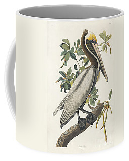 Coffee Mug featuring the painting Brown Pelican by Celestial Images