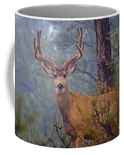 Buck Deer In A Mystical Foggy Forest Scene Coffee Mug