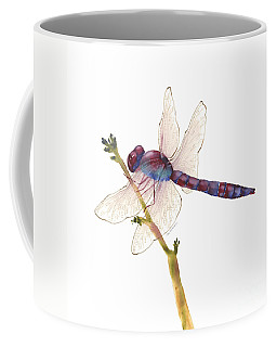 Burgundy Dragonfly  Coffee Mug